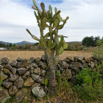 Hiking in Mexico: Inside and Outside Patzcuaro on Foot
